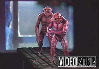VideoZone: Subspecies